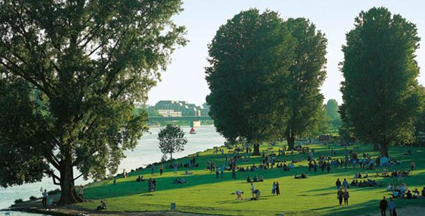 Heidelberg dil okulları ve dil eğitimi fiyatları